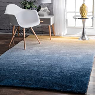 Best navy ombre rug Reviews