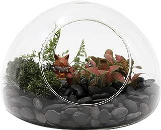 NCYP Hand Blown Glass Egg Shaped Round Bubble Terrarium Glass Globe Cute Miniature Micro Landscape Modern Minimalist Trendy Planter Terrarium Gift