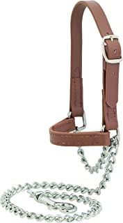 Best goat halter or collar Reviews