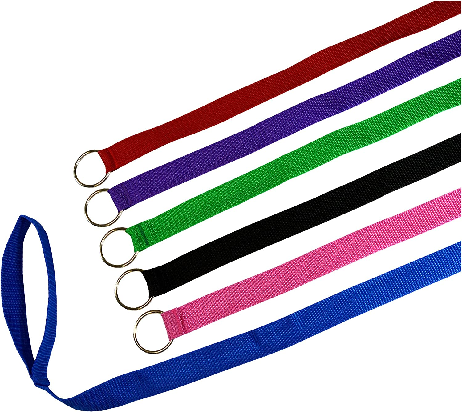 6 Foot Slip Lead, Slip Leads, Kennel Leads with O Ring for Dog Pet Animal Control Grooming, Shelter, Rescues, Vet, Veterinarian, Doggy Daycare (Size  6' x 1 , colors  Various)