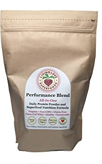 Superfood Protein Powder - Performance Blend All-In-One Meal Replacement - 100% Grass-Fed Whey and Raw, Sprouted Hemp and Pea - 15 Servings