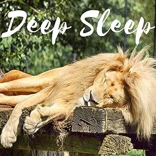 Deep Sleep Aid Brainwave Entrainment Meditation Treat Insomnia with Nature Sounds Music - Isochronic Tones Binaural Beats