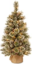 National Tree Company Pre-lit Artificial Mini Christmas Tree | Includes Small LED Lights, White Tipped Cones, Glitter Bran...