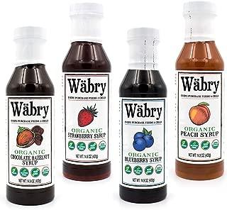 Wäbry Organic Syrup 14.9 oz Chocolate Hazelnut, Strawberry, Blueberry, Peach (Variety 4 Pack) BPA-Free Plastic