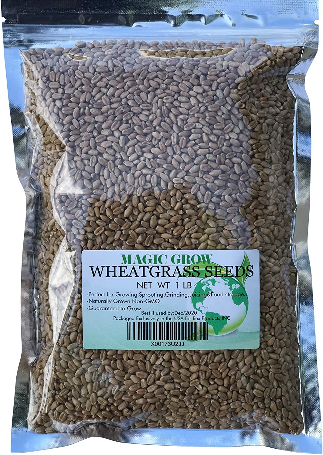 Chicago Mall Wheat Grass Seed 1lb online shop Grow - Guaranteed to