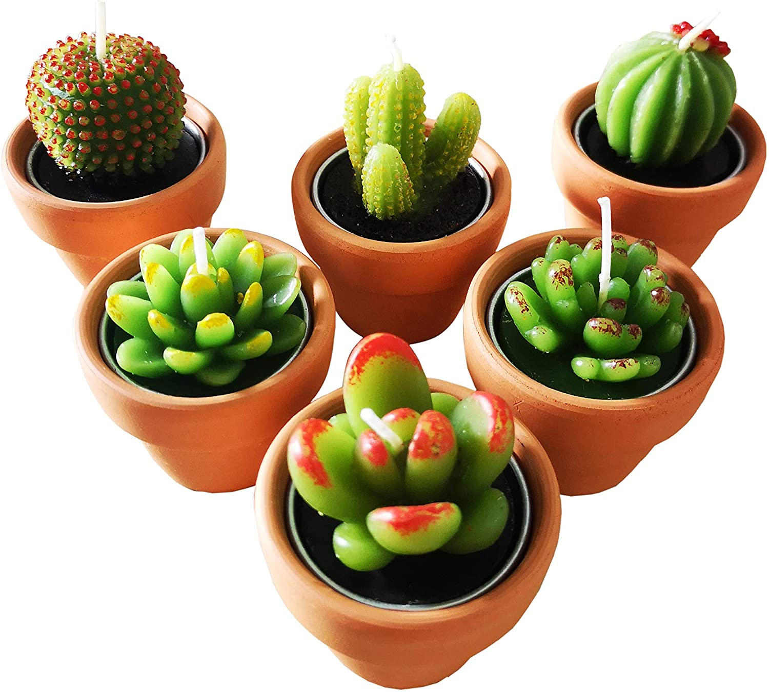 Rare Cactus Tealight Candles with Tiny Holder Terracotta Deluxe Pots Succul
