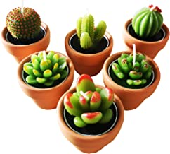 Cactus Tealight Candles with Tiny Terracotta Pots Holder, Succulent Baby Shower Favors Decorations, Delicate Decorative Ca...