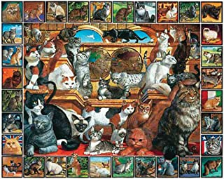 """Jigsaw Puzzle Lovable Pets 1000 Pieces 24""""X30""""-The World Of Cats"""