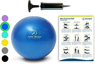 توپ تمرینی مینی با پمپ - 9 اینچ توپ کوچک باندر برای پایداری ، بار ، پیلاتس ، یوگا ، تمرین اصلی و فیزیوتراپی