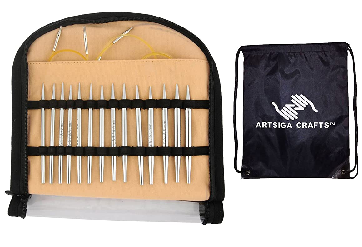 Knitter's Pride Nova Platina Special 16-inch Interchangeable Tip Knitting Needles Set Bundle with 1 Artsiga Crafts Project Bag 120602
