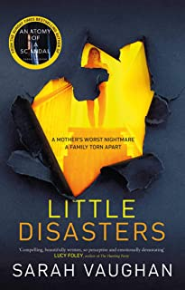 Little Disasters: the compelling and thought-provoking new novel from the author of the Sunday Times bestseller Anatomy of...