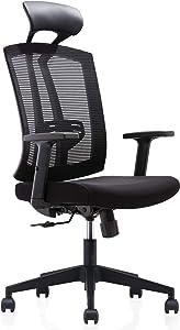 Storm Racer Schienale Alto Sedia da Ufficio ergonomica Girevole Sedia da scrivania con bracciolo Regolabile e Supporto Posteriore