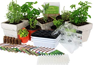 Culinary Indoor Herb Garden Starter Kit   Premium Herb Seeds   18 Non-GMO Varieties   Grow Cooking Herbs & Spices   Seeds: Peppermint, Basil, Fennel, Anise, Rosemary, Dill, Mustard, More