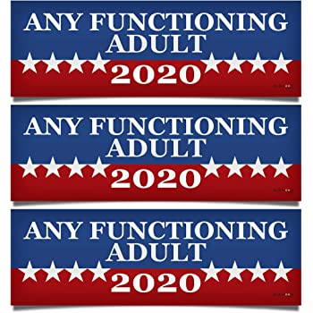 Any Functioning Adult 2020 Funny Bumper Sticker 4 Round Car Truck Vinyl Decal Political Presidential Election Made in USA