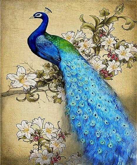 5D DIY Embroidered Diamond Painting Beauty and Bird Cross Stitch Full Square  Round Rhinestone Mosaic Decoration Gift