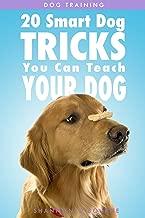 learn to earn dog training