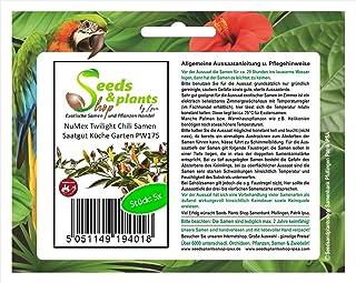 Stk - 5x NuMex Twilight Chili Samen Saatgut Küche Garten PW175 - Seeds Plants Shop Samenbank Pfullingen Patrik Ipsa