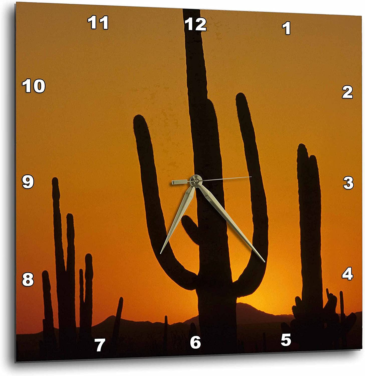 3dpink DPP_87957_2 Giant Saguaro Cactus Succulent, Arizona-Us03 Jme0107-John and Lisa Merrill-Wall Clock, 13 by 13-Inch