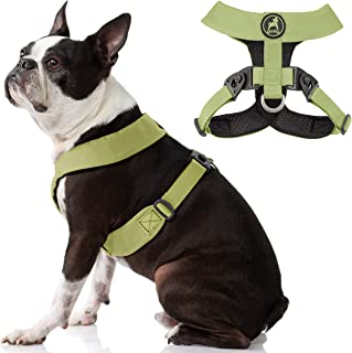 Gooby Dog Harness - Green, Medium - Comfort X Harness Dual Snap Rotational Buckles with Patented Choke-Free X Frame - Perf...
