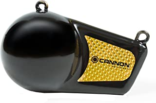 Cannon 12 pound Flash weight