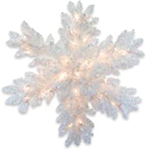 National Tree 32 Inch White Iridescent Tinsel Snowflake with 35 Warm White Battery Operated LED Lights with Timer (TT33-31...