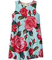 Dolce & Gabbana Kids - Rose Print Dress (Big Kids)