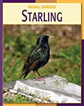 Starling (21st Century Skills Library: Animal Invaders)