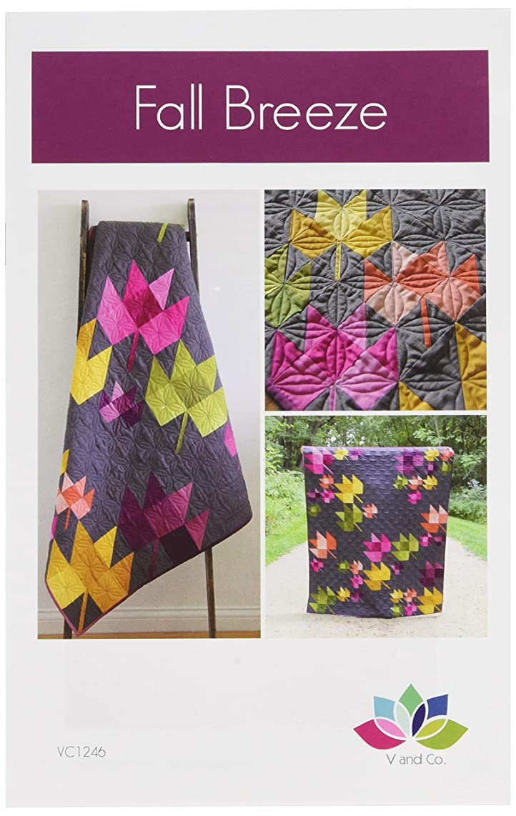 V and Co VC1246 Modern Quilting Pattern, Finish Size 60in x 72in, Choose Your Own
