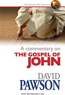 A Commentary on the Gospel of John (English Edition)