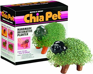 Best star wars chia pet Reviews