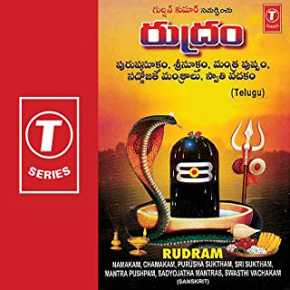 Best namakam and chamakam Reviews