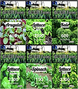 Set of 20 Vegetable & Melon Seeds Perfect for Your Home Garden 20 Varieties-All Seeds are Heirloom, 100% Non-GMO, Non-Hybrid! USA Grown. by B&KM Farms. 20 Different Varieties. (Salad 6 Pack)