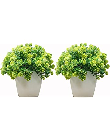 Artificial Plants Buy Artificial Plants Online At Best Prices In India Amazon In