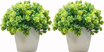 Hyperboles Set of 2 Mini Cute Artificial Plants Bonsai Potted Plastic Faux Green Grass Fake Topiaries Shrubs for Home Decor, Washroom and Office Decor