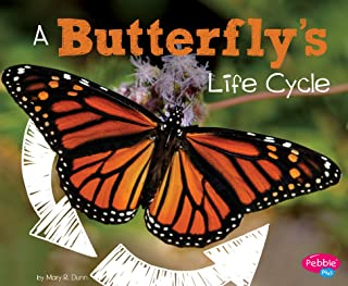 A Butterfly's Life Cycle (Explore Life Cycles)