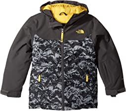 The North Face Kids Brayden Insulated Jacket (Little Kids/Big Kids)