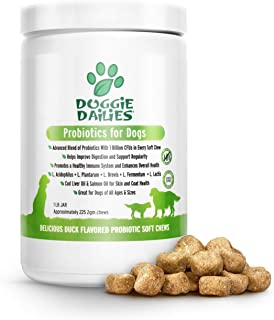 non dairy probiotic for dogs