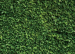 SJOLOON 7x5ft Spring Backdrop Natural Green Lawn Party Photography Background Birthday Party Newborn Baby Lover Wedding Photo Studio Props 10923
