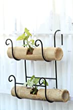 Green Gardenia Iron Railing Bamboo Holder with Bamboo Pot Double (Large)