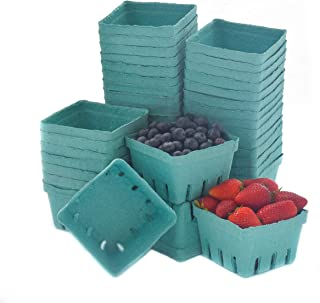 Best 1 pint berry basket Reviews