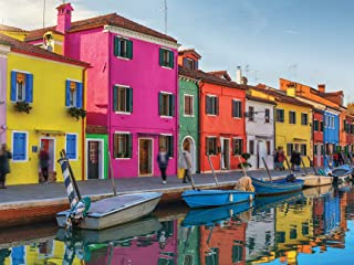 Best 300 Large Piece Puzzle for Adults - Colorful Venice Jigsaw Puzzle Review
