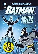 Summer Freeze! (You Choose Stories: Batman)