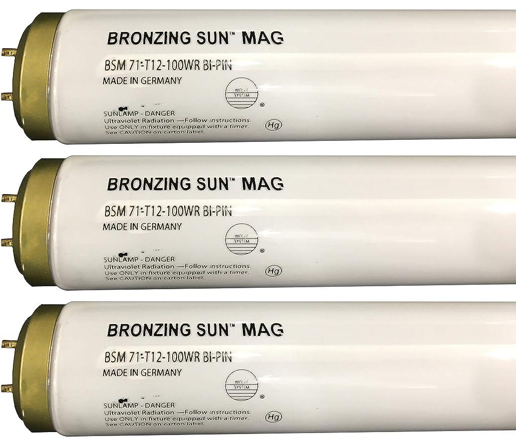 だらしない読書抗生物質Wolff Bronzing Sun Magnum fr71?Ho 100?W BiピンReflector Tanningランプ T12 27248
