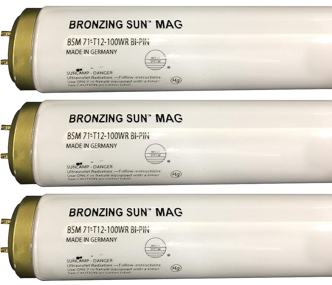 独立した町インシュレータWolff Bronzing Sun Magnum fr71?Ho 100?W BiピンReflector Tanningランプ T12 27248