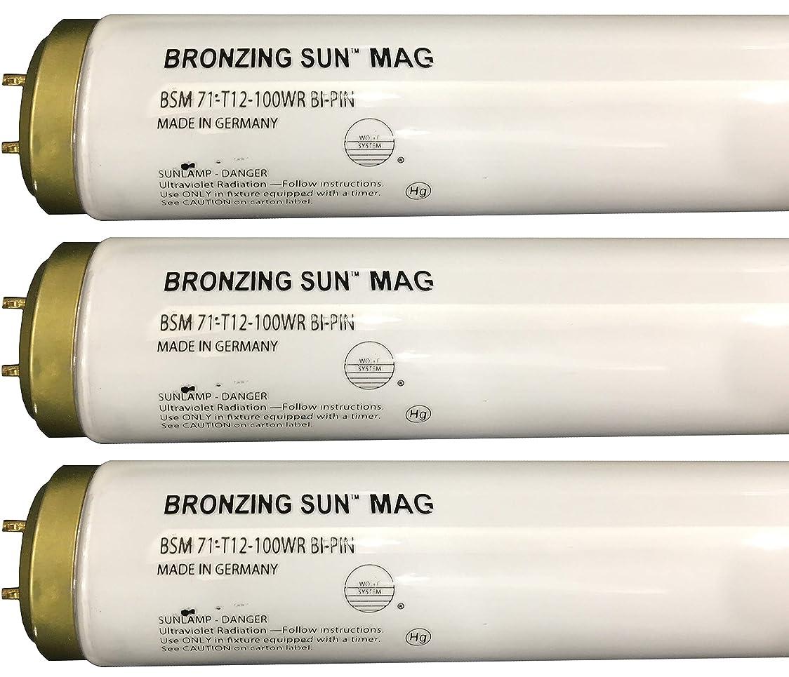 リフレッシュリサイクルするピグマリオンWolff Bronzing Sun Magnum fr71?Ho 100?W BiピンReflector Tanningランプ T12 27248