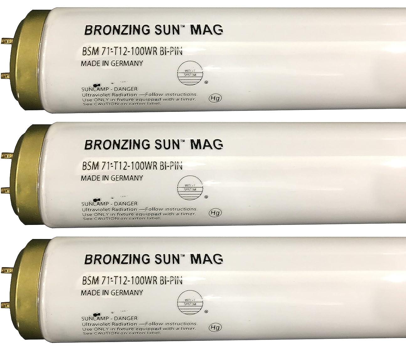 城コーチ放棄されたWolff Bronzing Sun Magnum fr71?Ho 100?W BiピンReflector Tanningランプ T12 27248