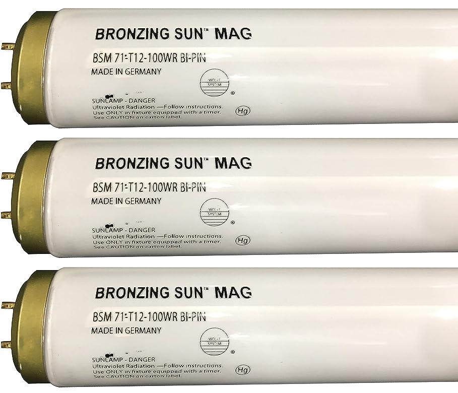 コショウ事業内容舗装Wolff Bronzing Sun Magnum fr71?Ho 100?W BiピンReflector Tanningランプ T12 27248