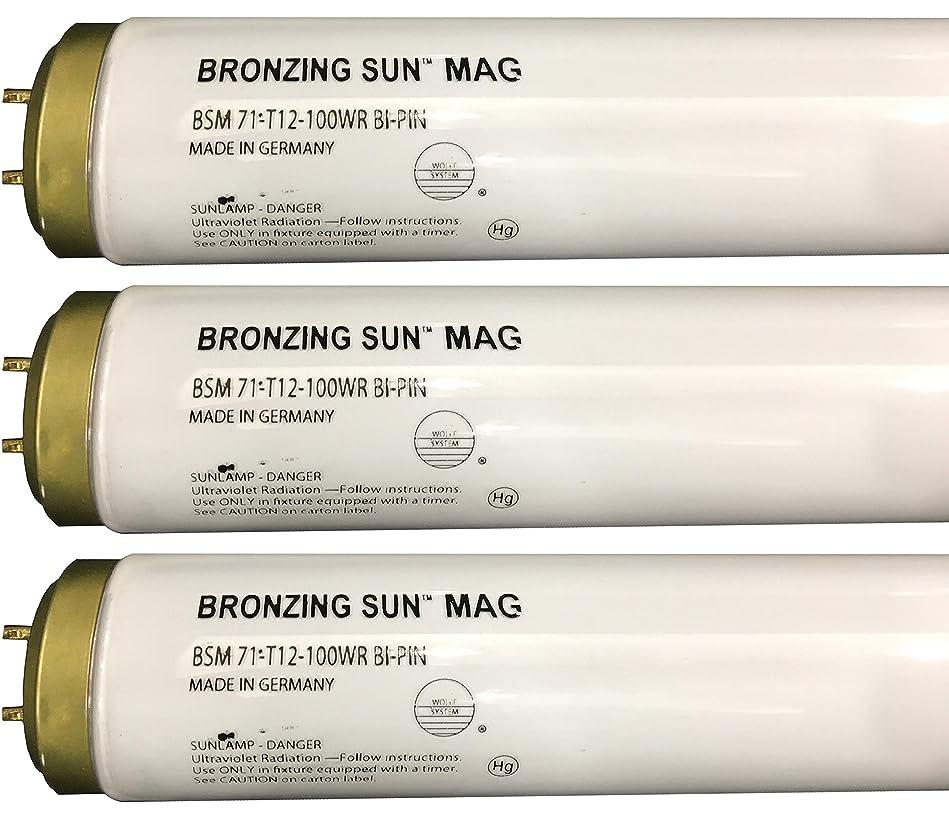 危険にさらされている午後かろうじてWolff Bronzing Sun Magnum fr71?Ho 100?W BiピンReflector Tanningランプ T12 27248