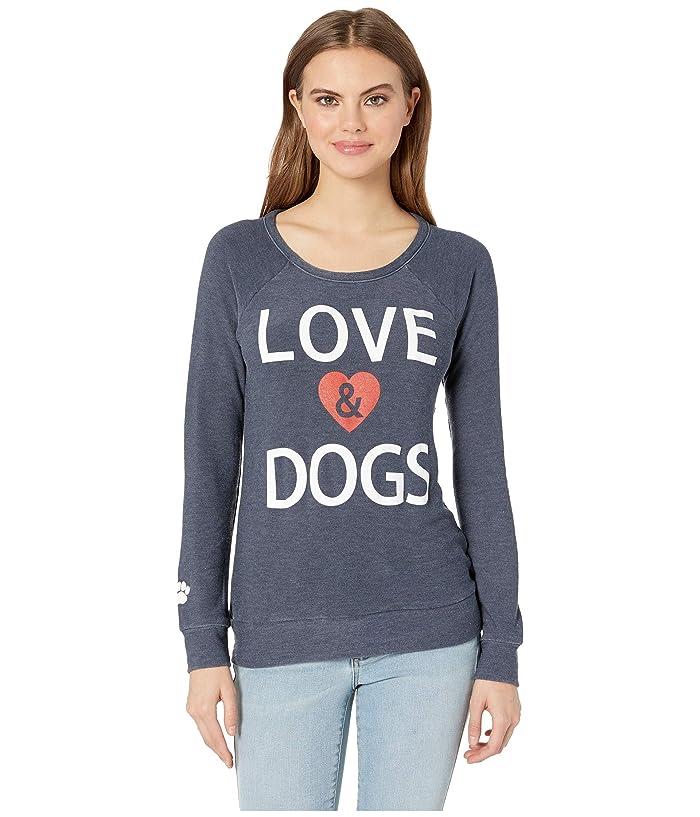 Chaser Love Dogs Cozy Knit Sweatshirt (Avalon) Women