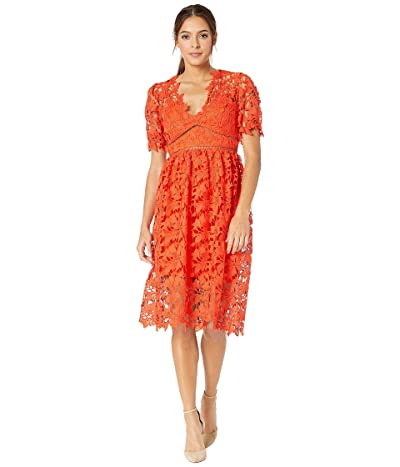 Bardot Ricko Lace Dress (Grenadine) Women